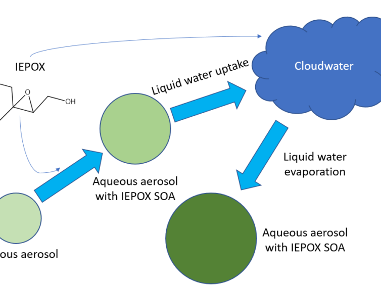 New Publication: Impact of Aerosol-Cloud Cycling on Aqueous Secondary Organic Aerosol Formation