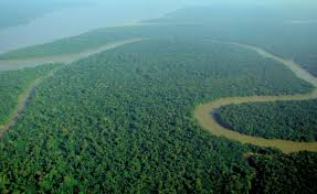 simpleGAMMA used to study aerosols over the Amazon rainforest